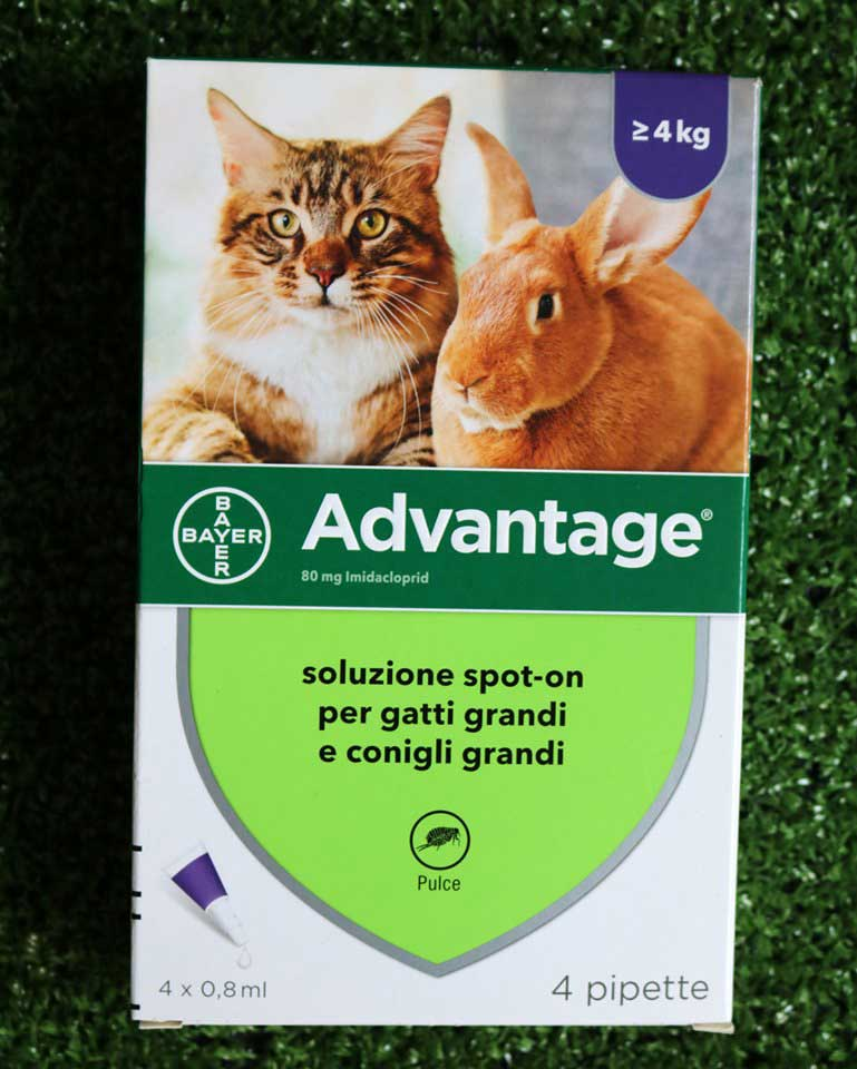 Advantage1